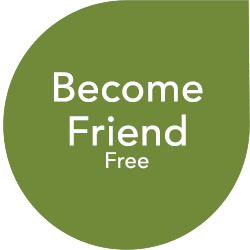 become friend free
